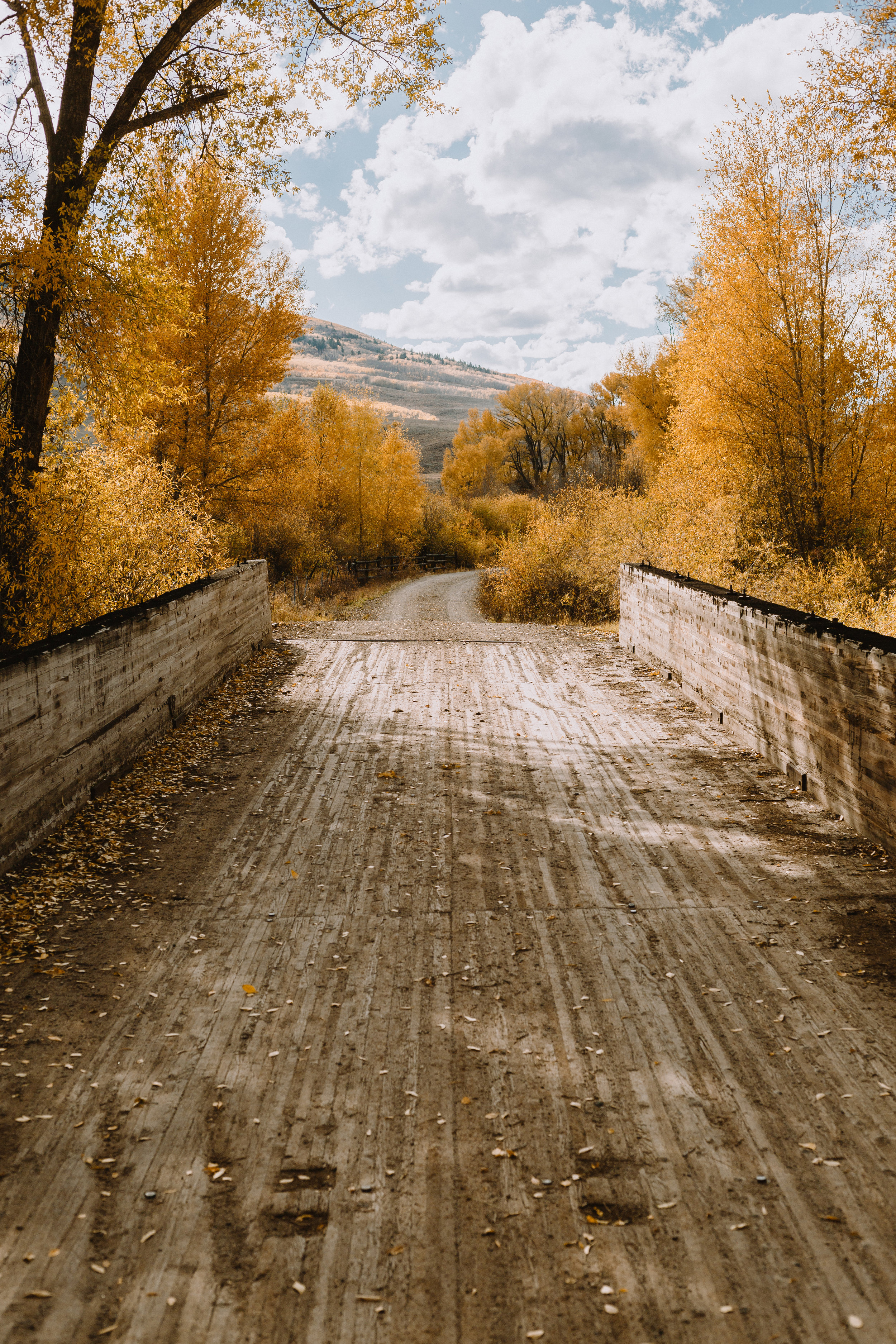 What happens in Colorado when you whip down a random dirt road.