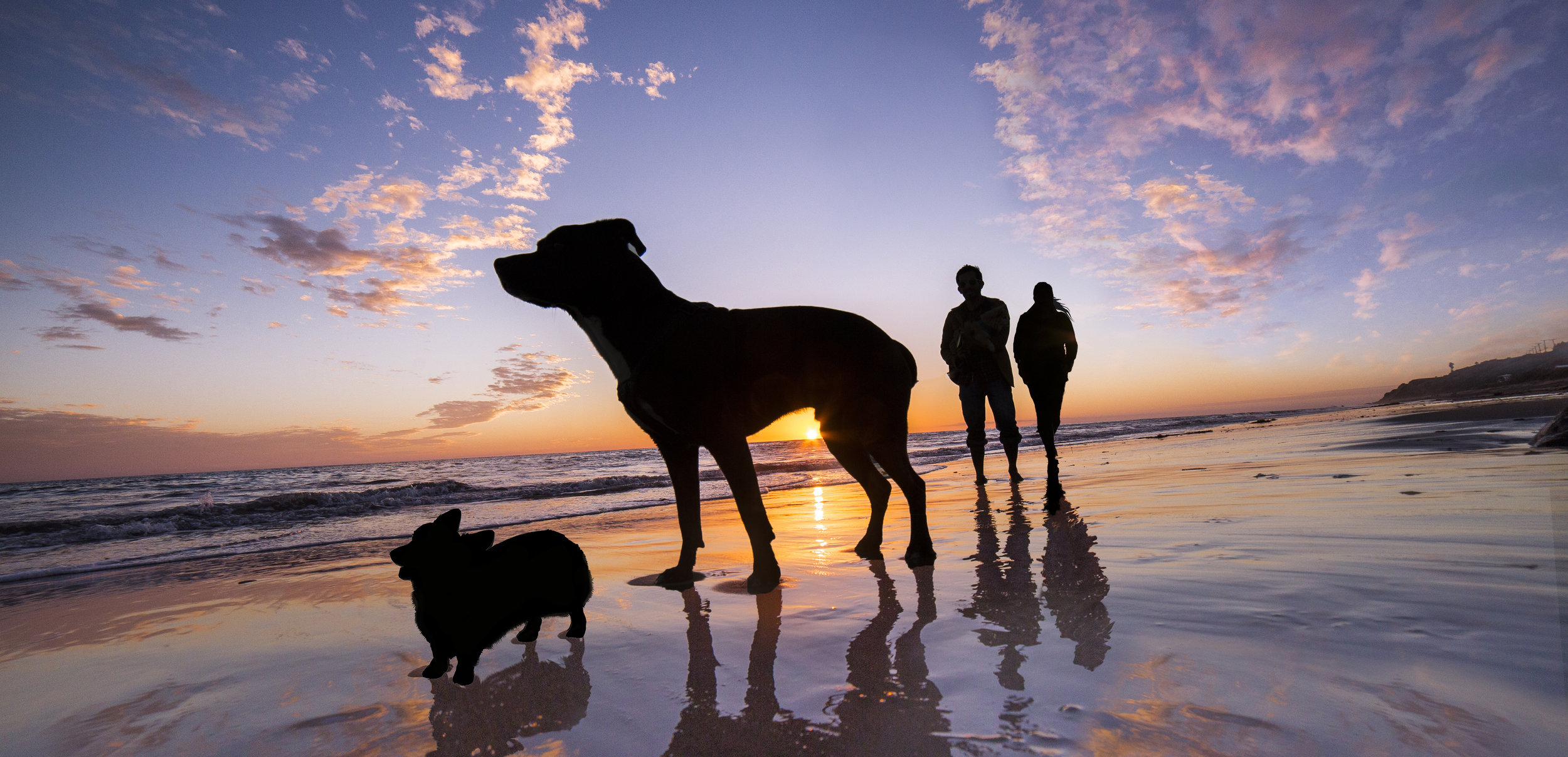 Kai silhouette leo carrillo phtsp.jpg