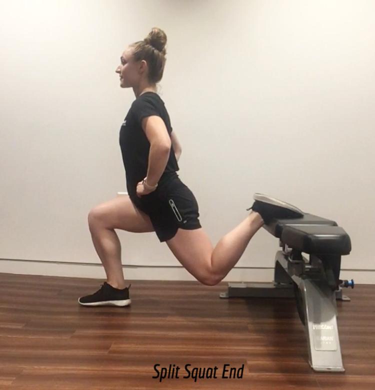split squat.PNG