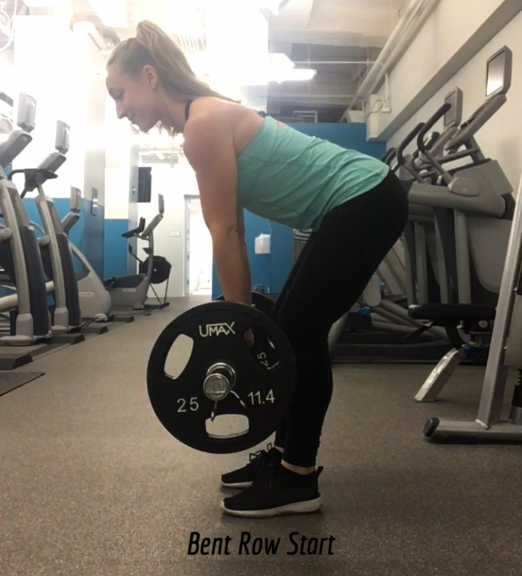 bent over row1.PNG