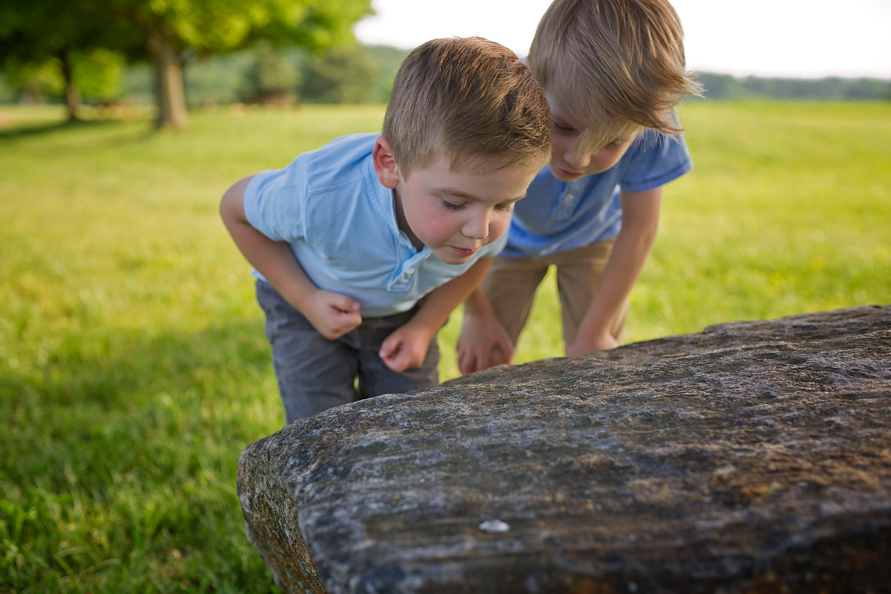 Two young brothers looking at a bug on a rock