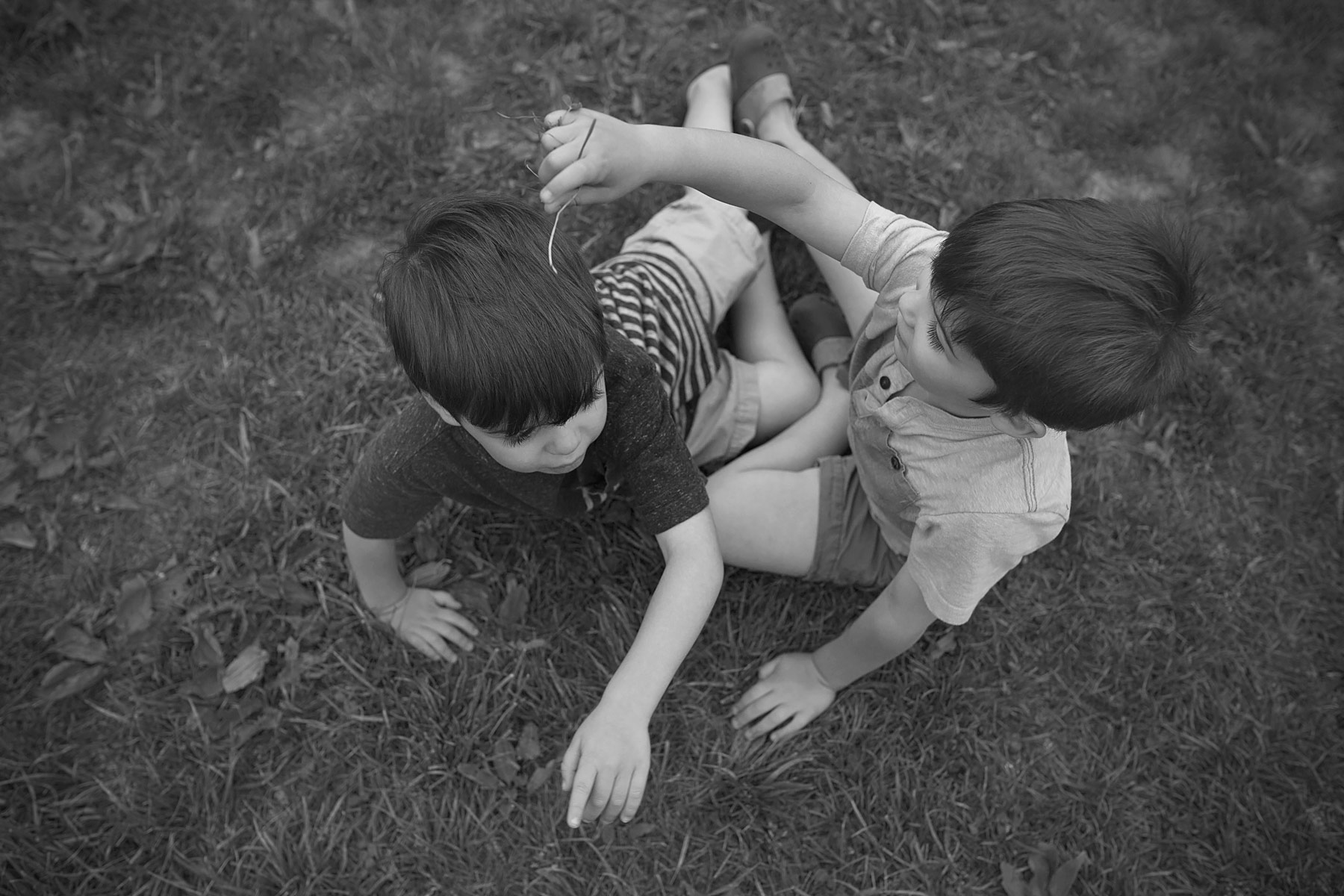 black and white of boy putting grass on brother's head