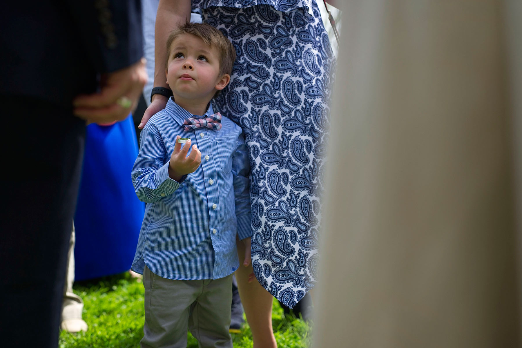 little boy looks up at bride and groom in receiving line