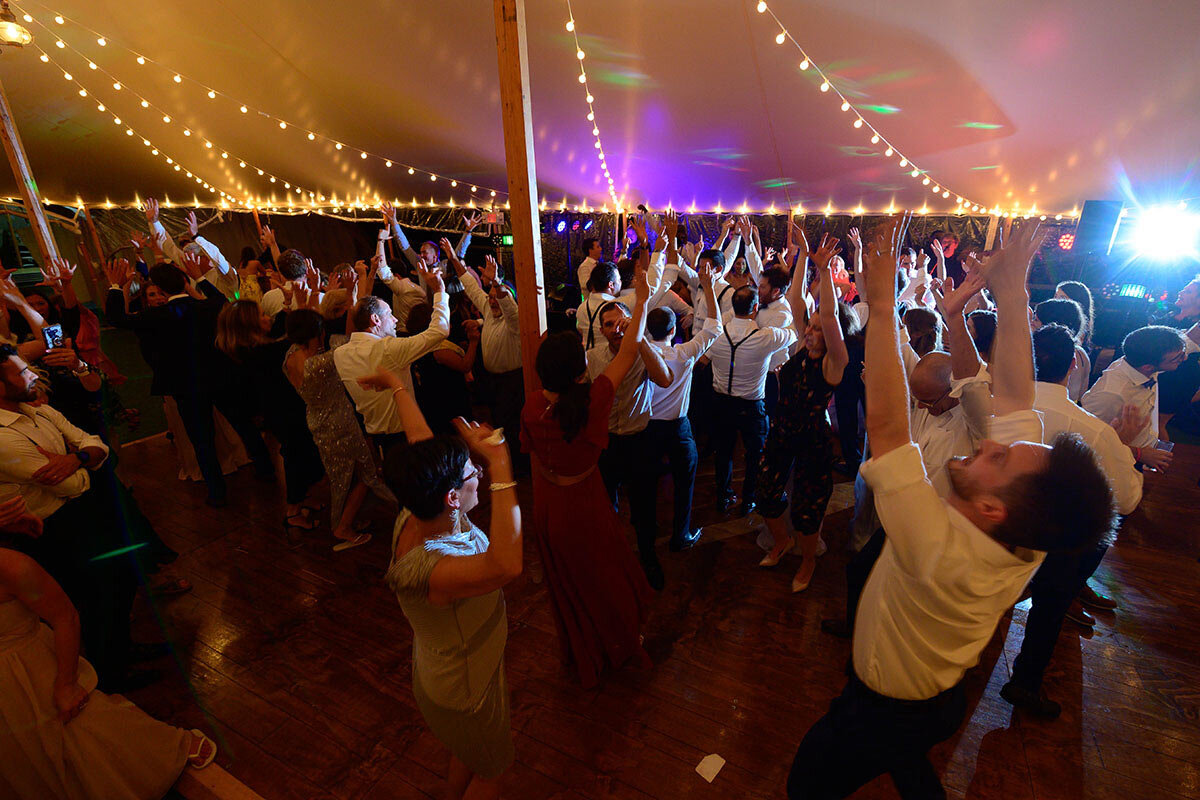 Wedding guests dance to the song shout.