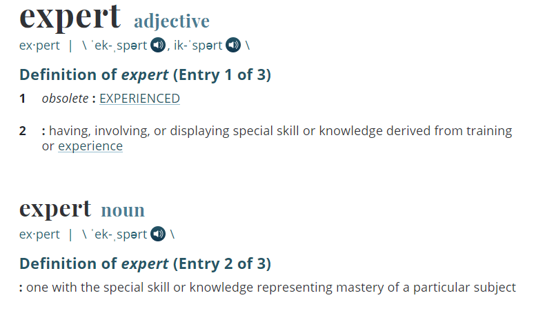 Expert definition.PNG