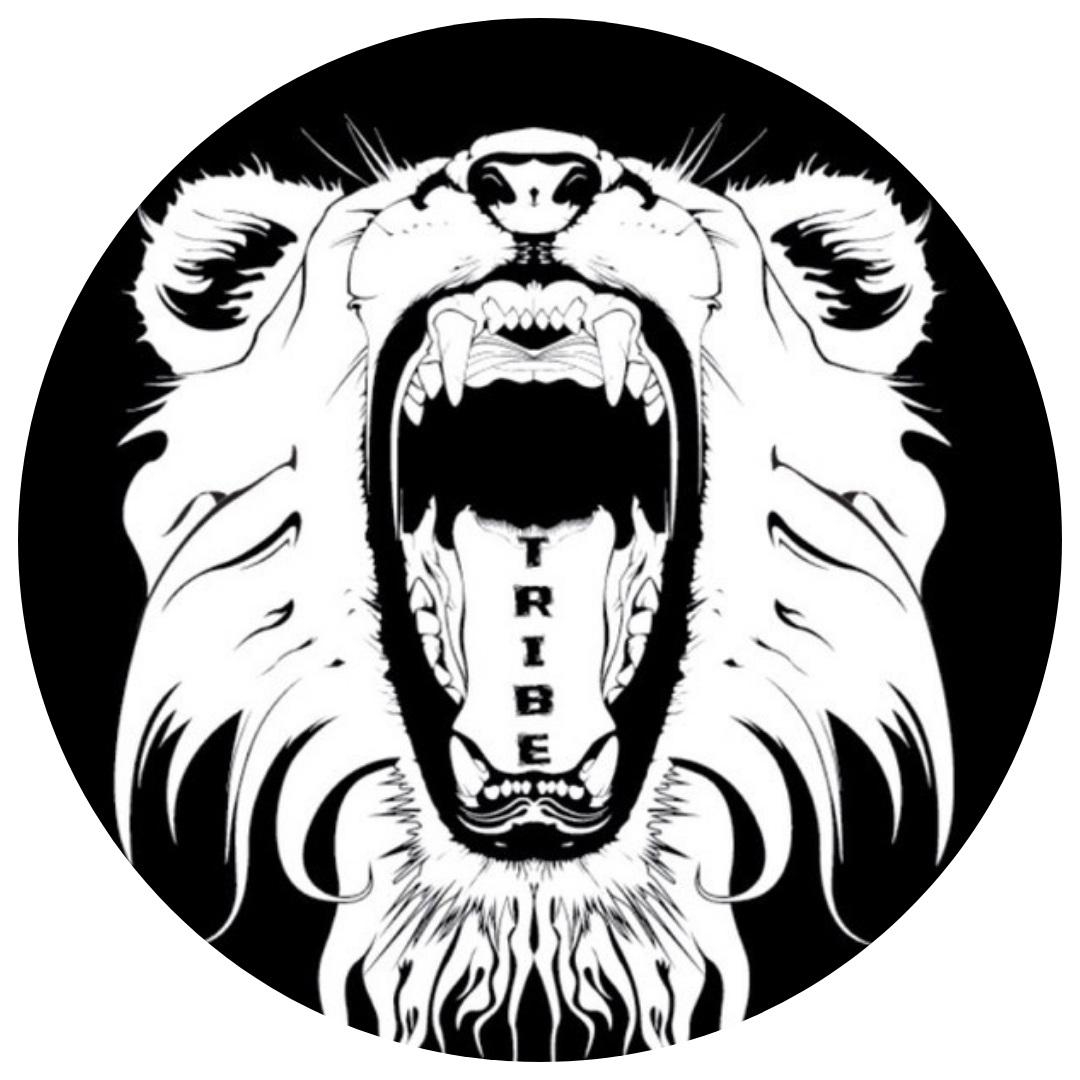 Tribe Youth Logo