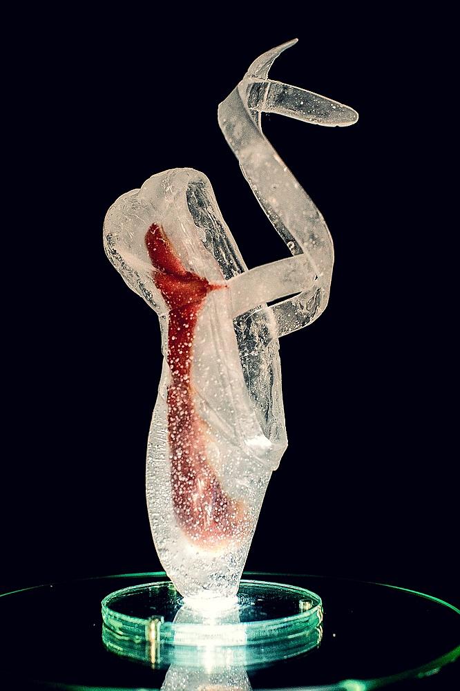 Cast Glass 2016 -