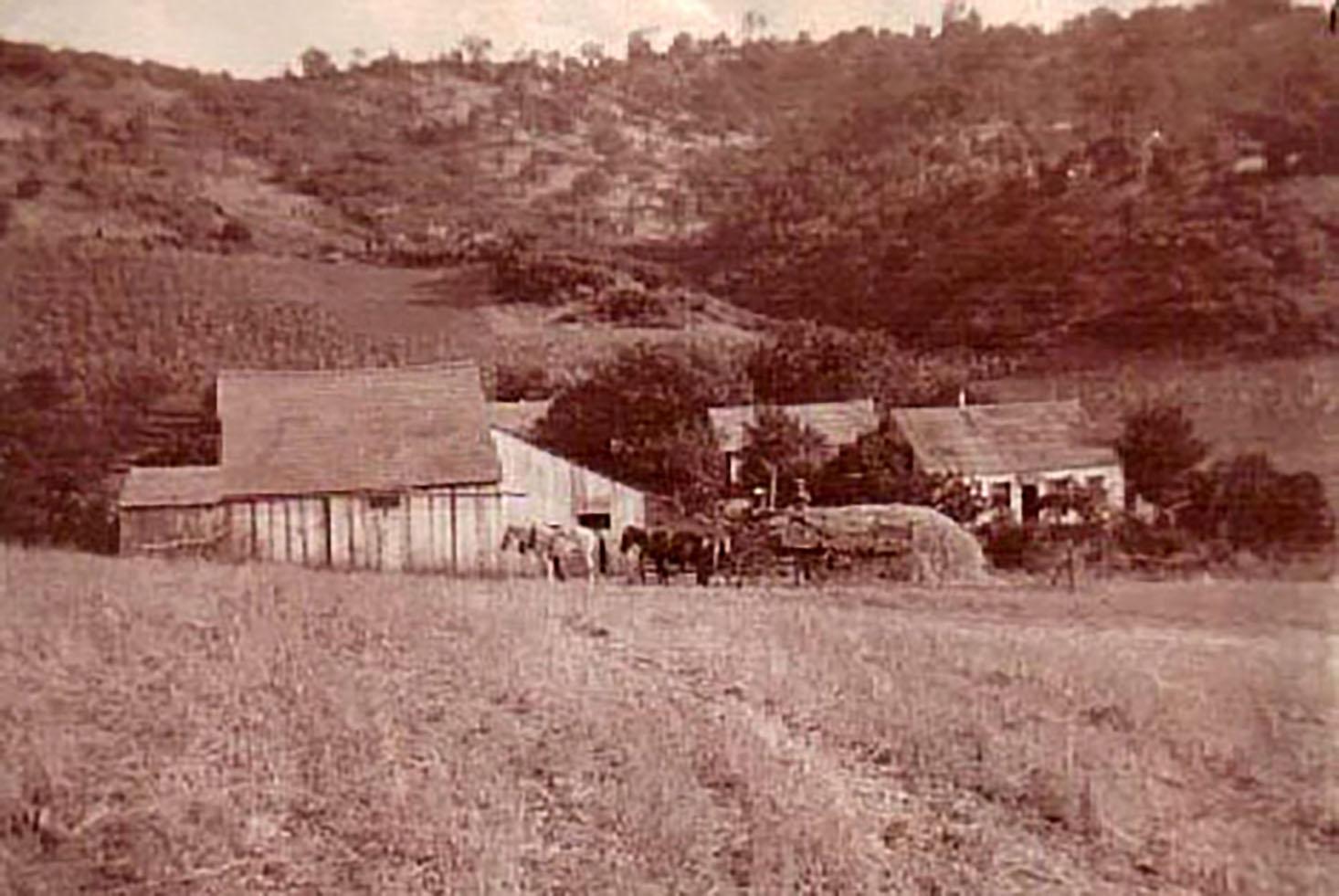 Langenbeck Homestead_1915.jpg