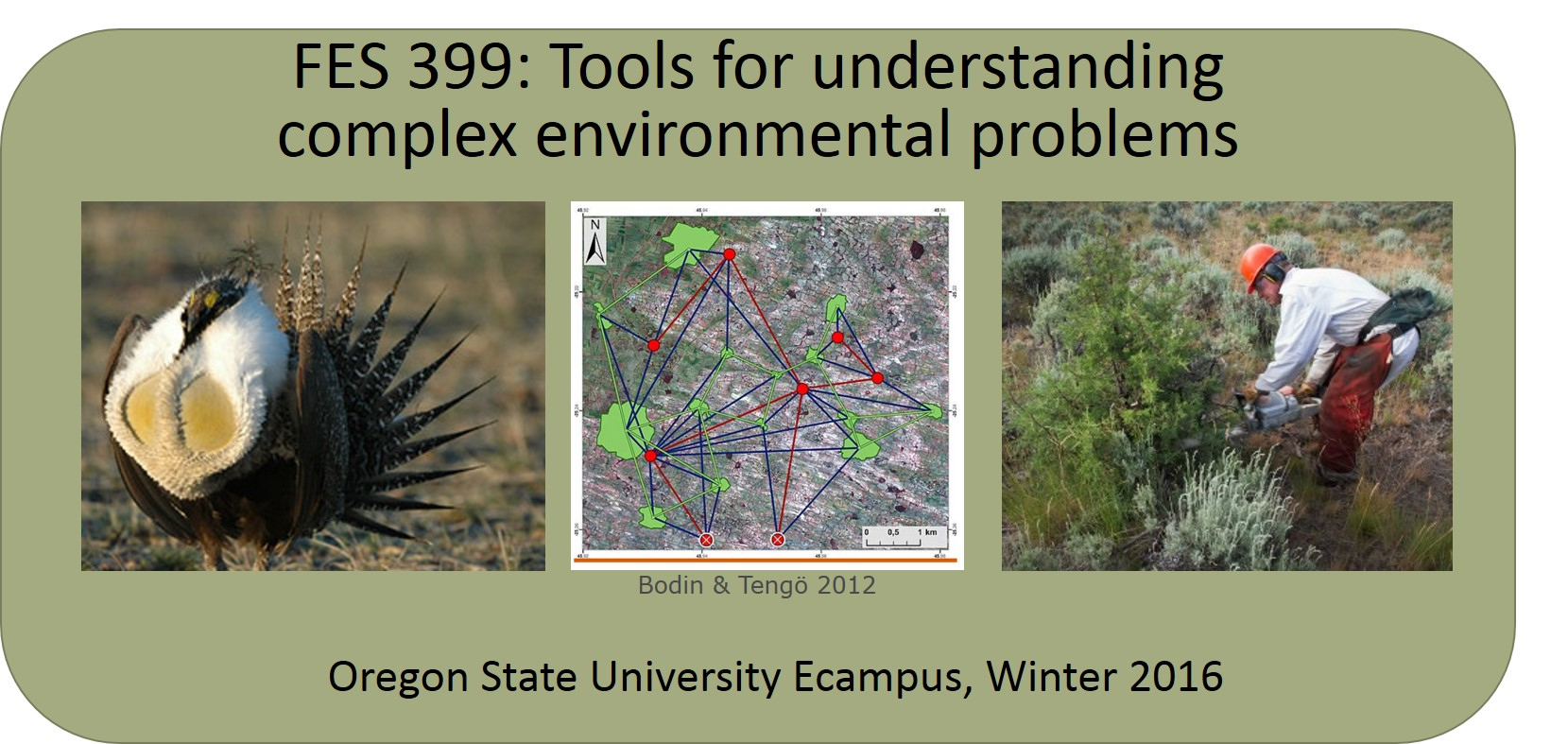 DESIGNED AND TAUGHT FES 399 FOR OREGON STATE UNIVERSITY ECAMPUS