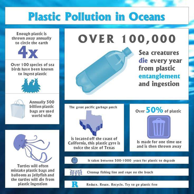 d554434f9ad6c1f202aa868f333a9c93--dilema-plastic-pollution.jpg
