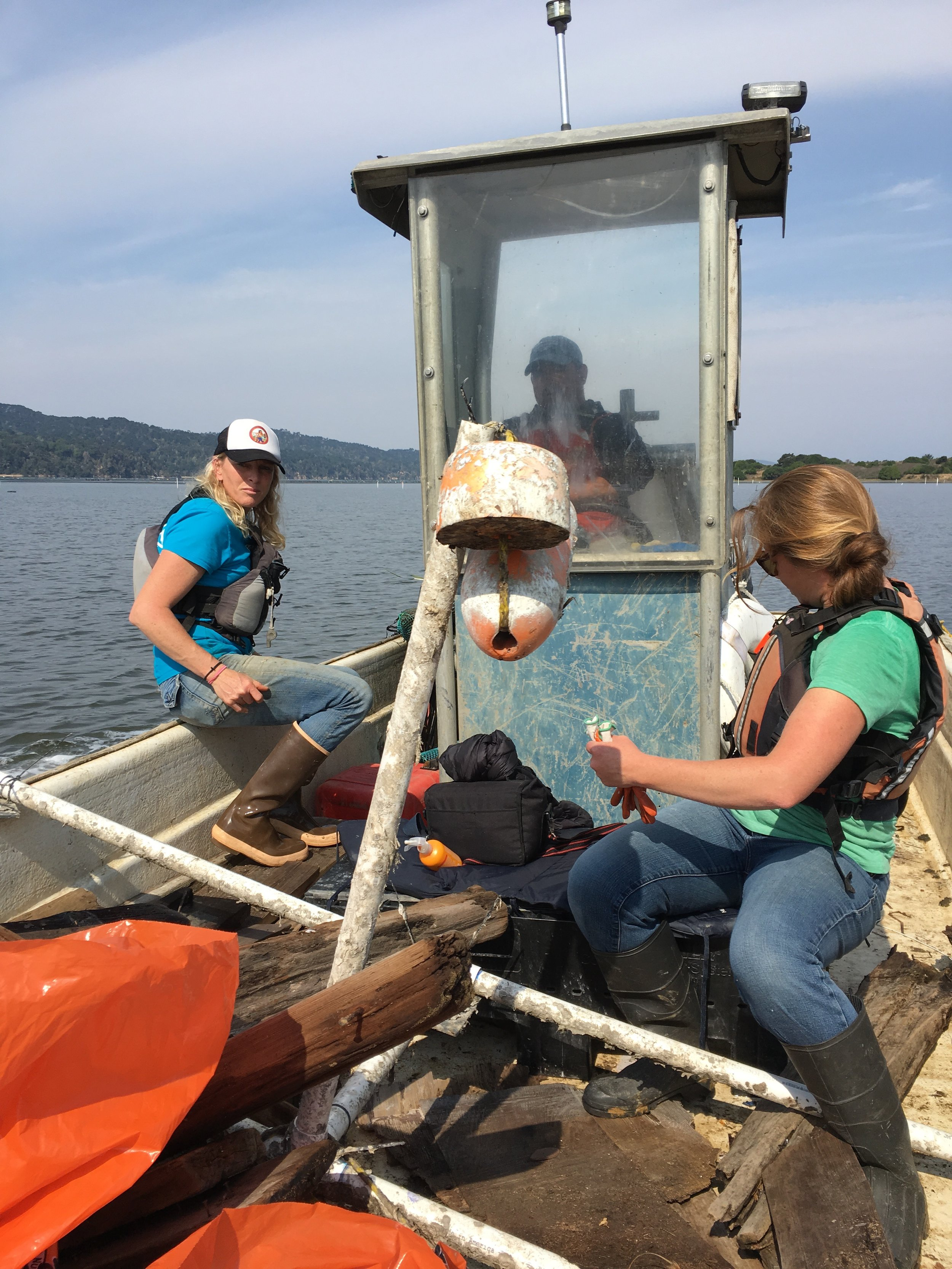 Coastal Clean Up on Tomales Bay 2017. Tomales Bay Oyster Co. Photo Credit Remy Galvan Hale:Hog Island Oyster Co.jpg