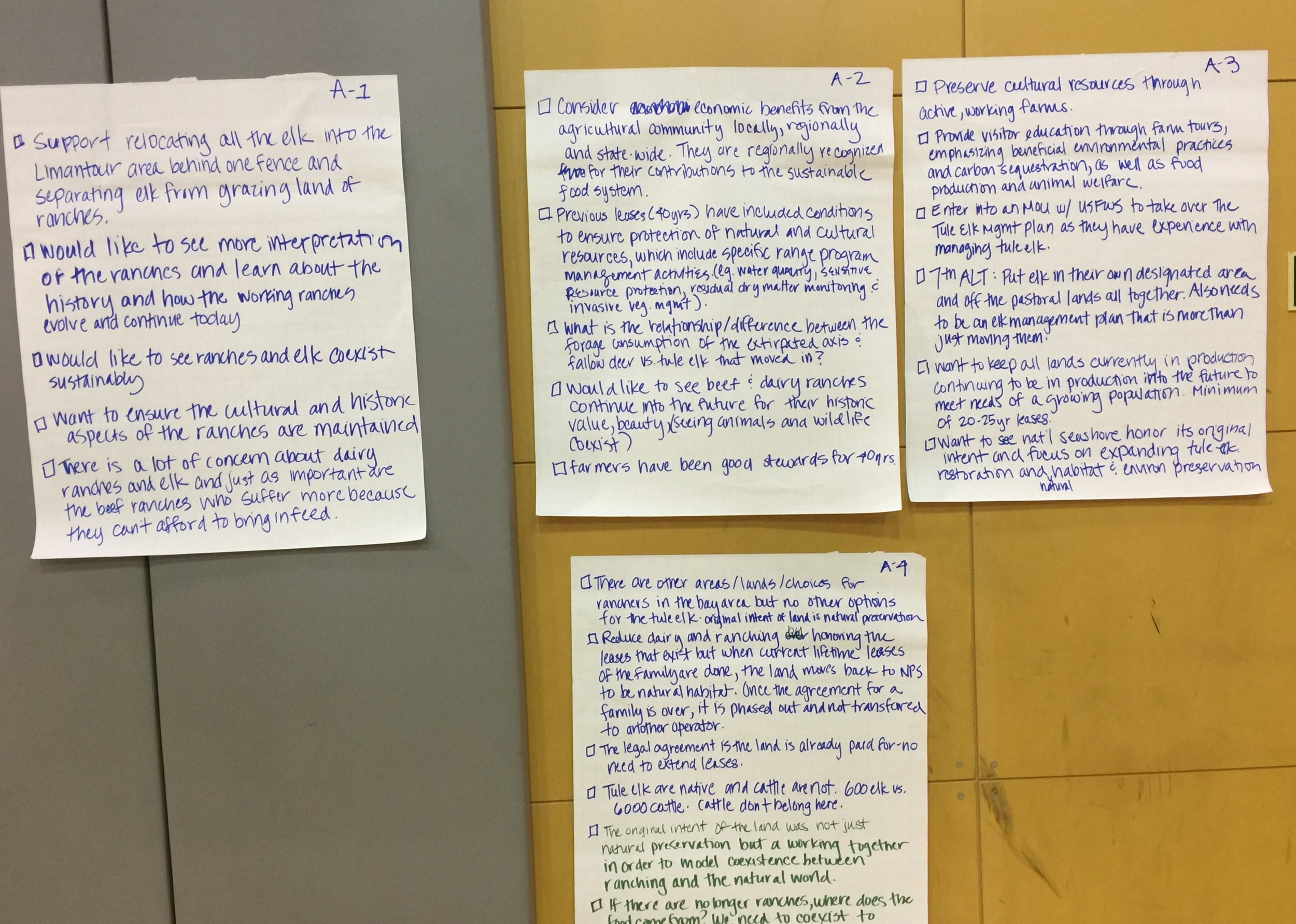 Sample of public comments from October 2017 Point Reyes Station workshop.