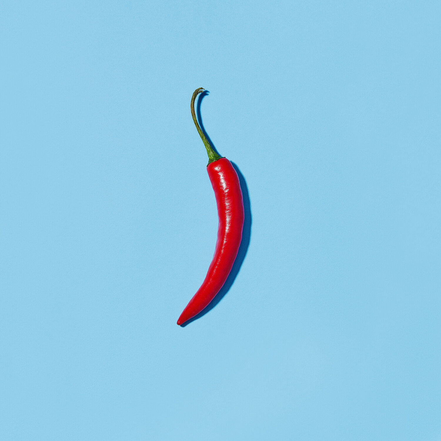 Chili Speed Up Metabolism