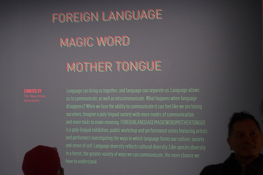 foreign-language-magic-word-mother-tongue---opening-reception_32884260674_o copy.jpg