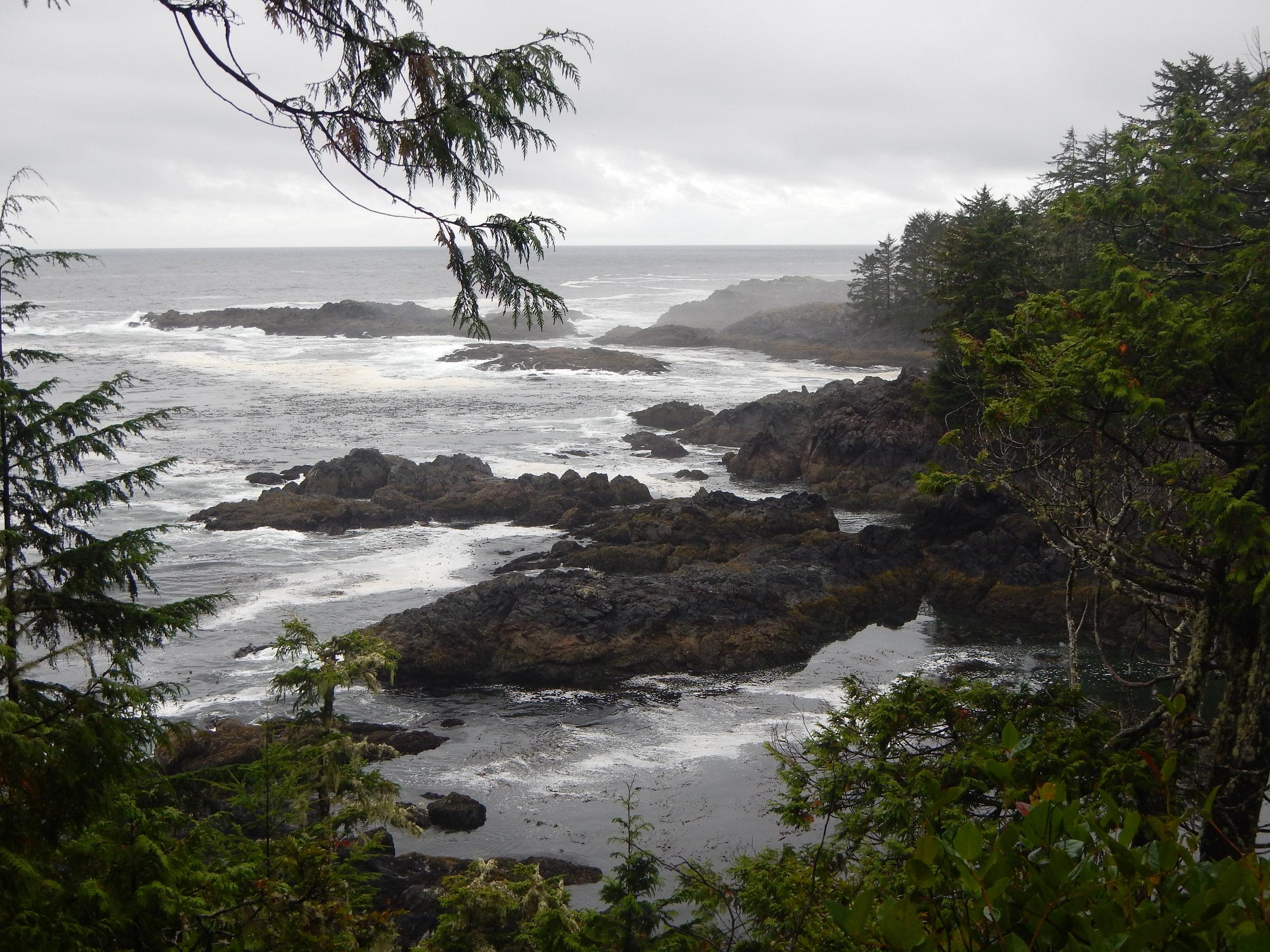 Wild West Coast - Vancouver Island, B.C..JPG