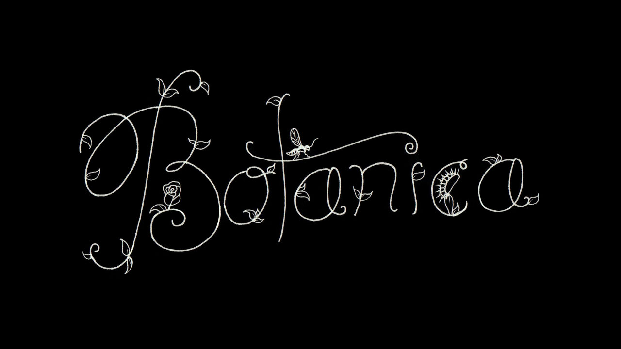 Botanica-Branding-1280-BLACK.jpg