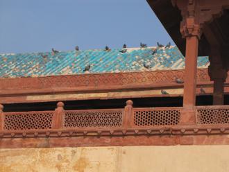 fatehpur 11.jpg