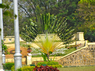 mysore palace 4.jpg