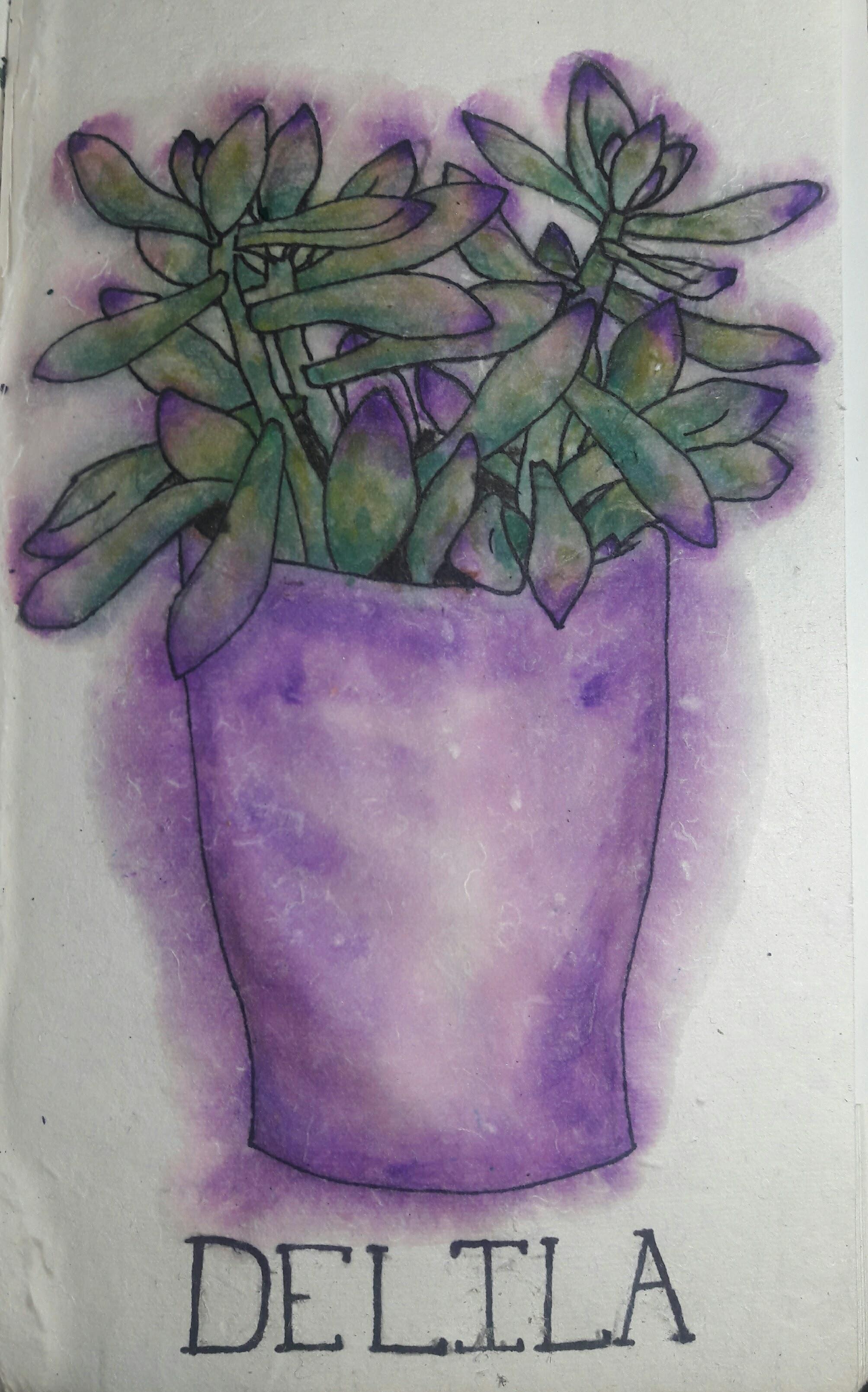 Delila, 2016  Watercolor on paper
