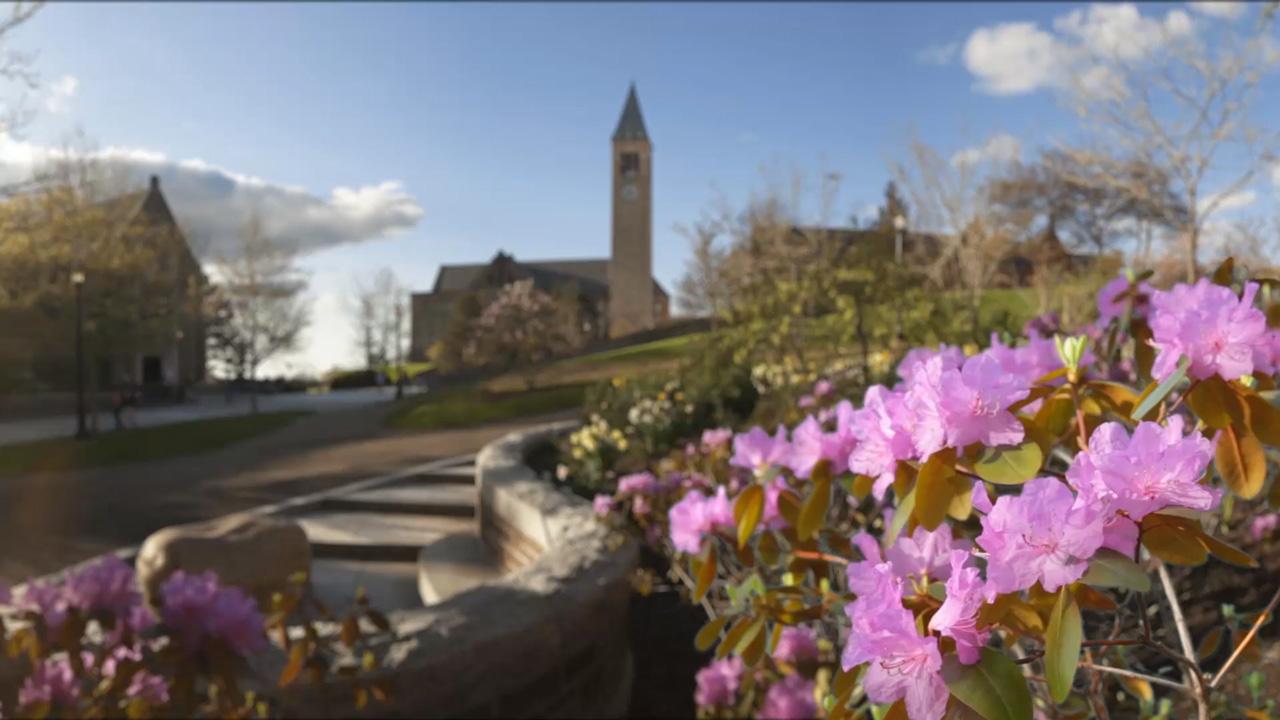 Cornell Spring 2020 Calendar.Cornell Model Un Conference