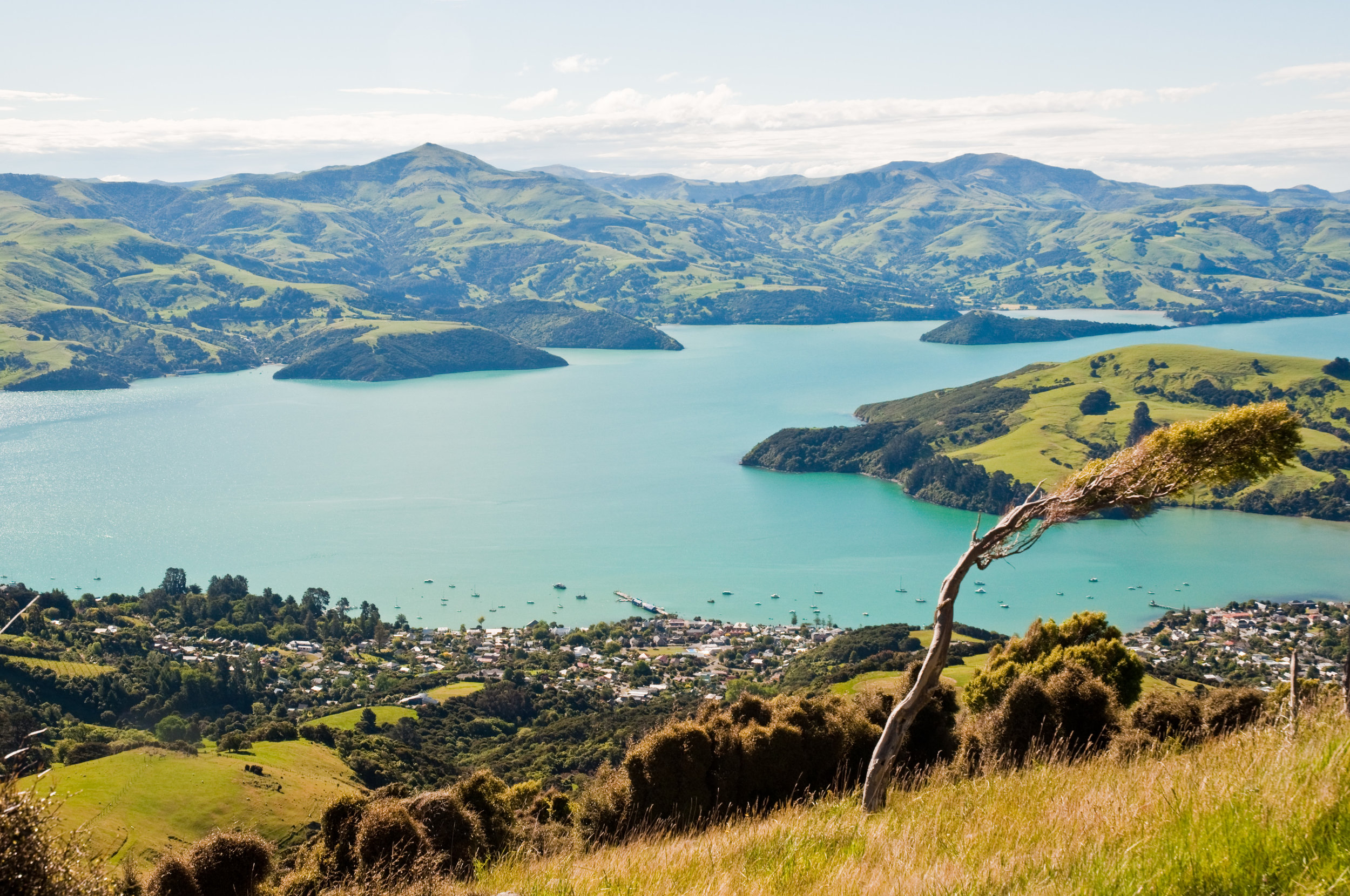 Akaroa,_Canterbury,_New_Zealand_from_Stony_Bay_Road,_21st._Nov._2010_-_Flickr_-_PhillipC.jpg