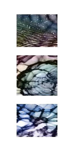 Shush artwork1.jpg