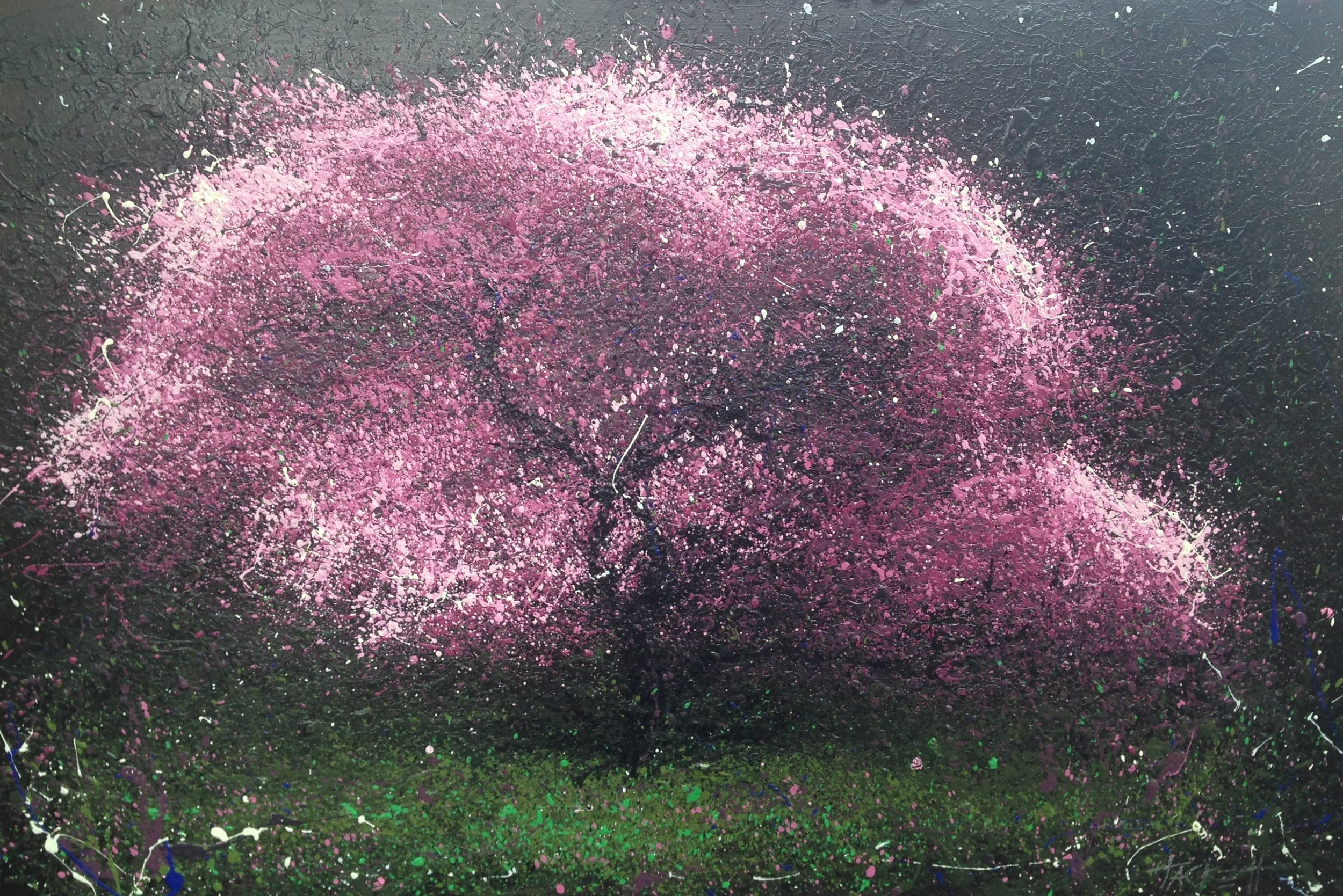 CHERRY BLOSSOM - SOLD