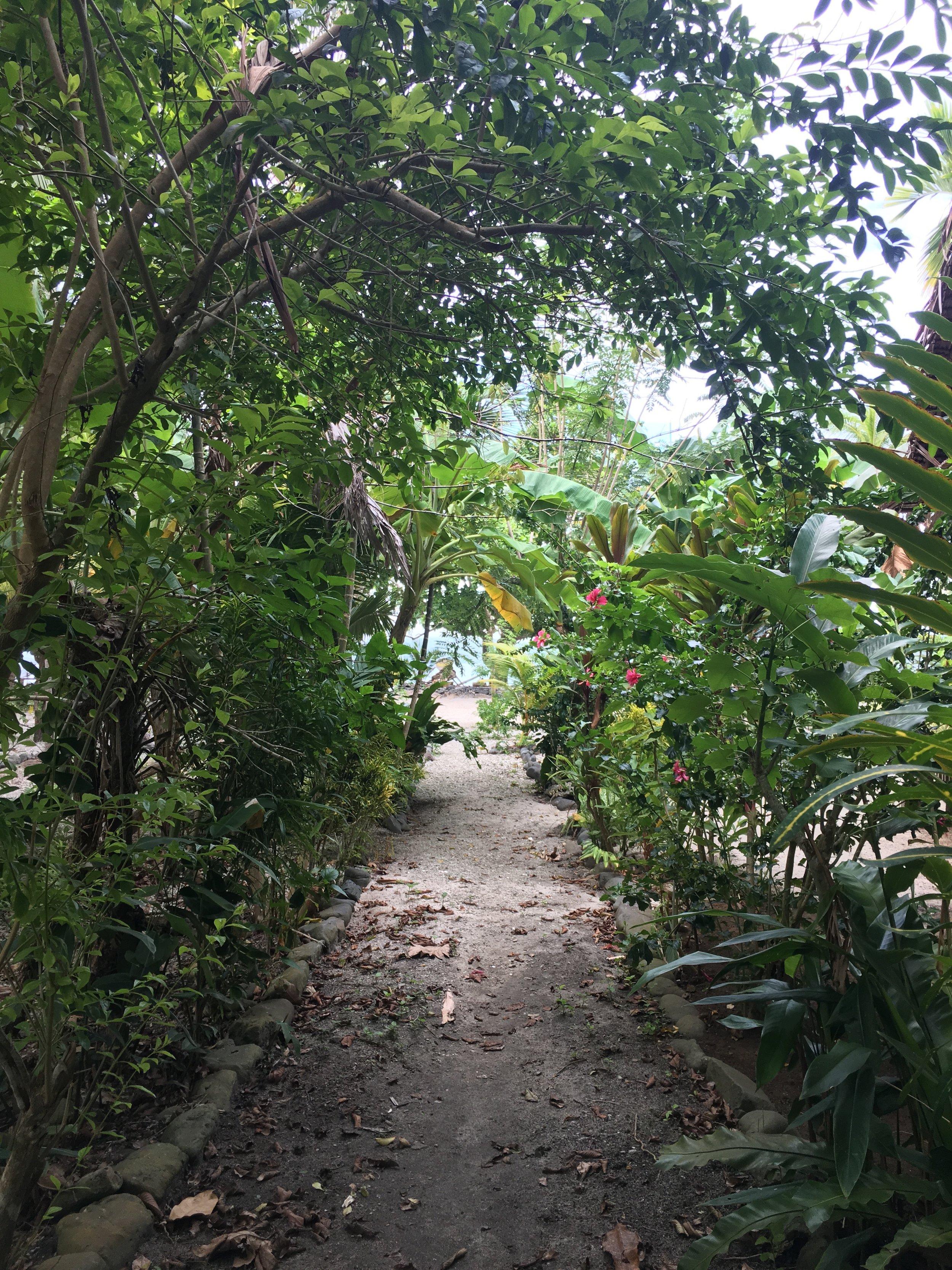 Garden Path Tauwase Homestay Gonubalabala