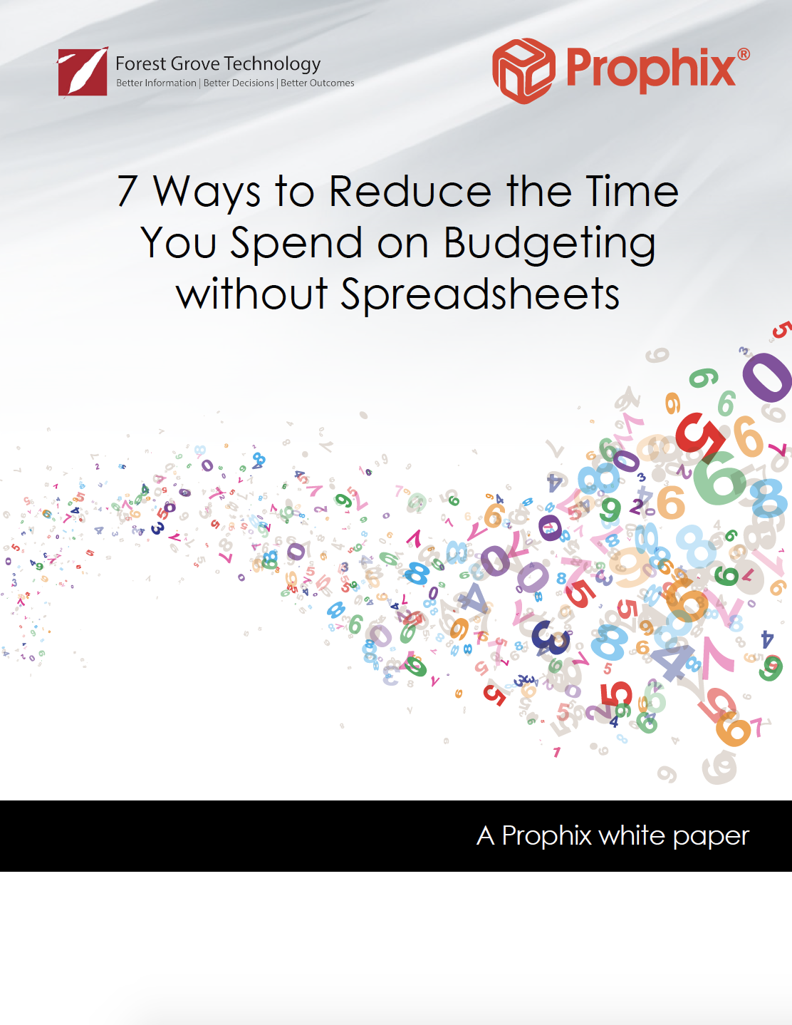 Prophix Budgeting White Paper