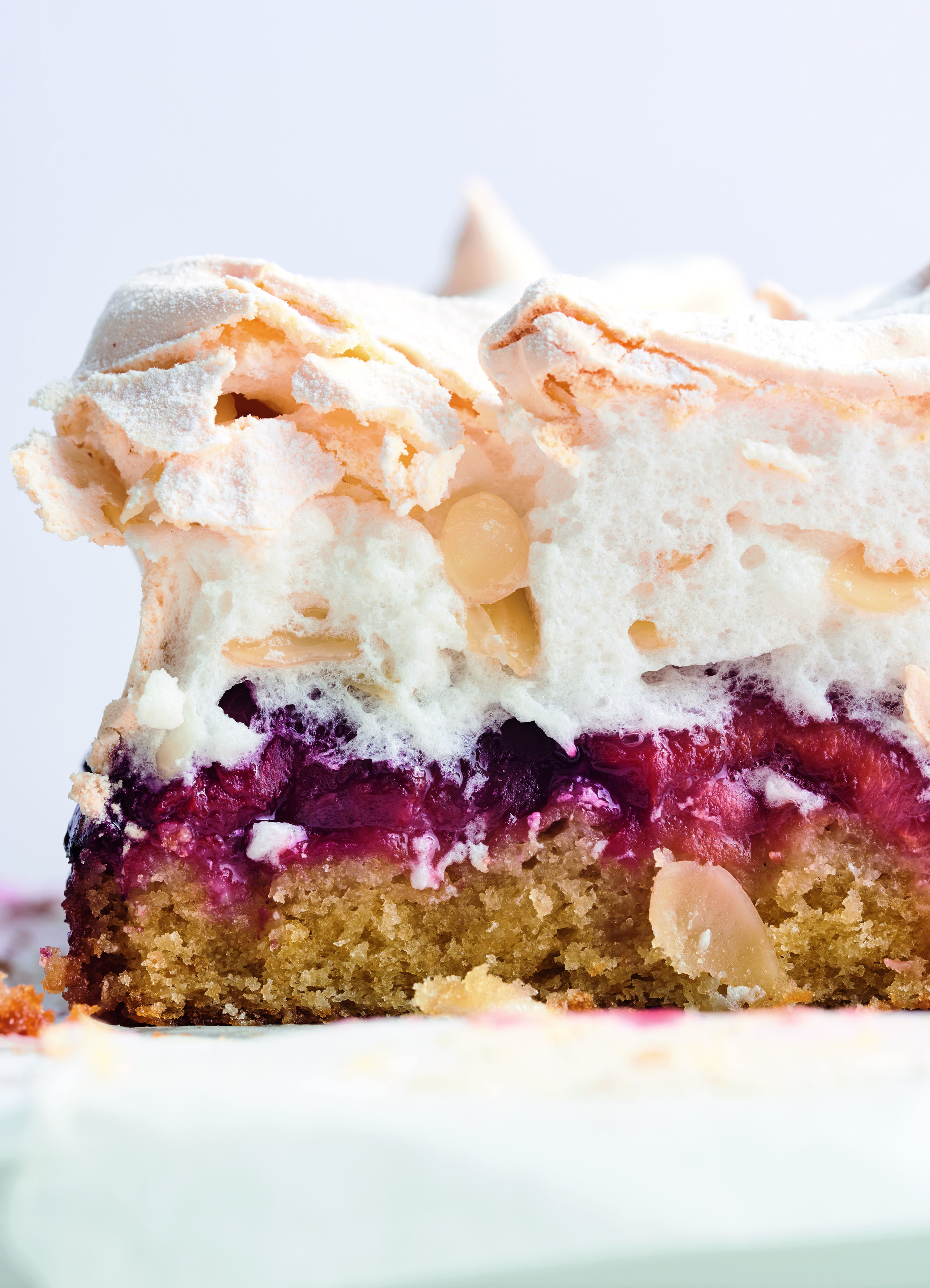 Louise Cake with Plum and Coconut.jpg