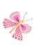 butterfly_left.jpg
