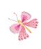 butterfly_right.jpg