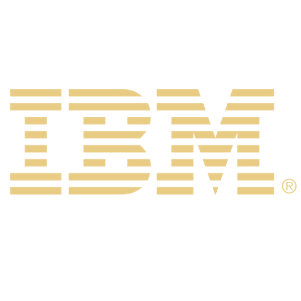 Portfolio - IBM.png
