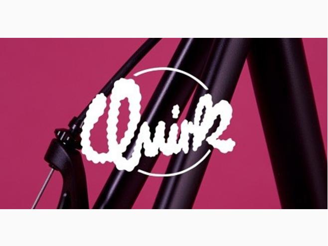 http://www.quirkcycles.com/ (Logo by Lisa O'Hara)