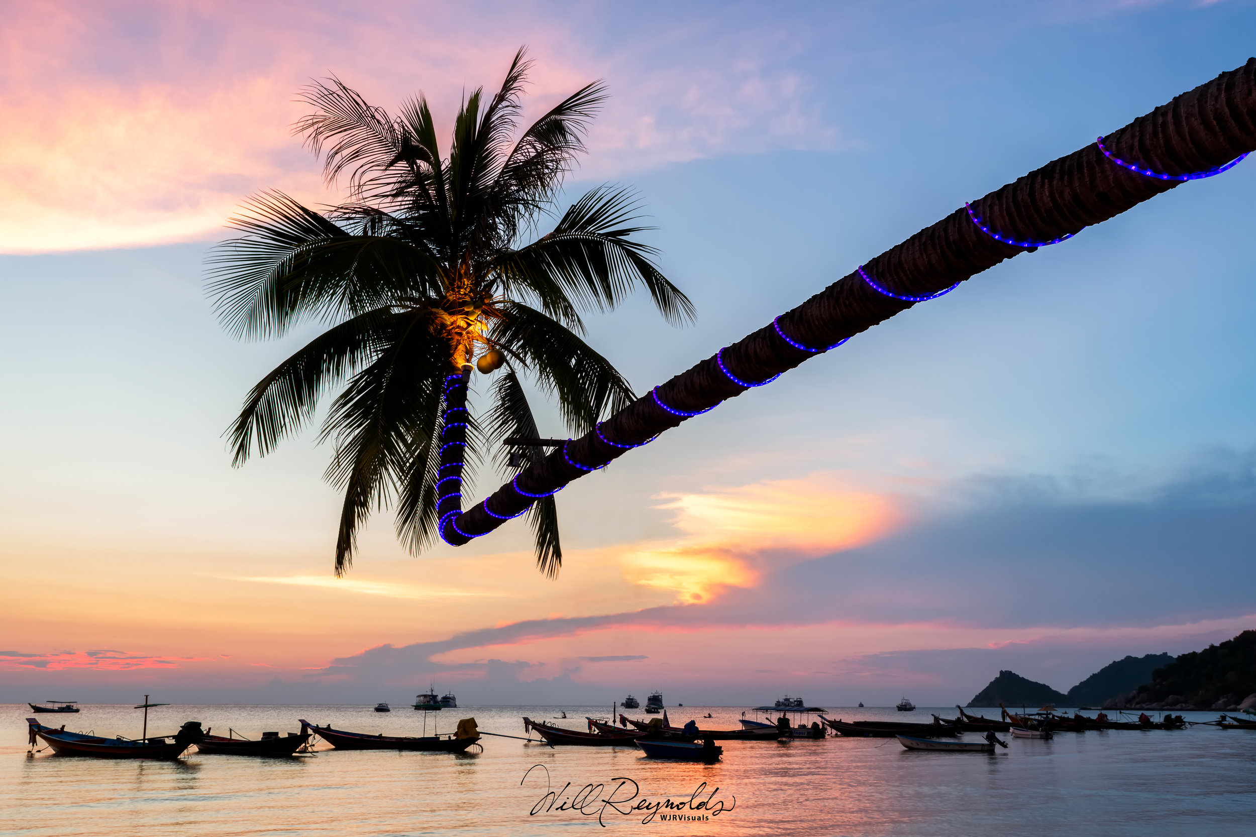 Palm tree and Long-tail boats on Koh Tao's Sairee Beach - Nikon D850 & Tamron 24-70mm f2.8 G2