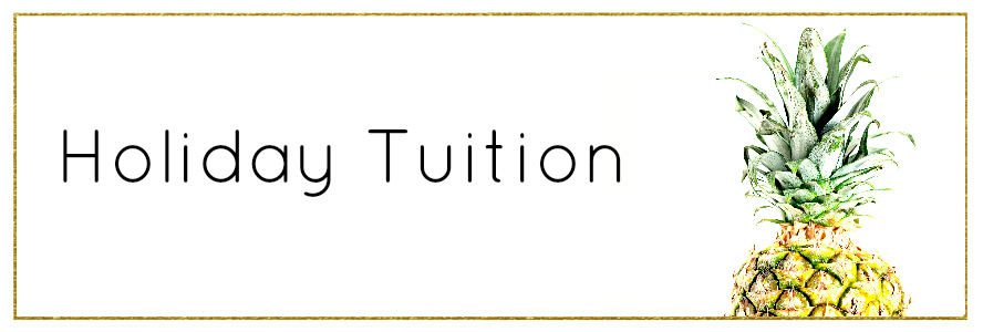 Holidaytuition2banner.jpg