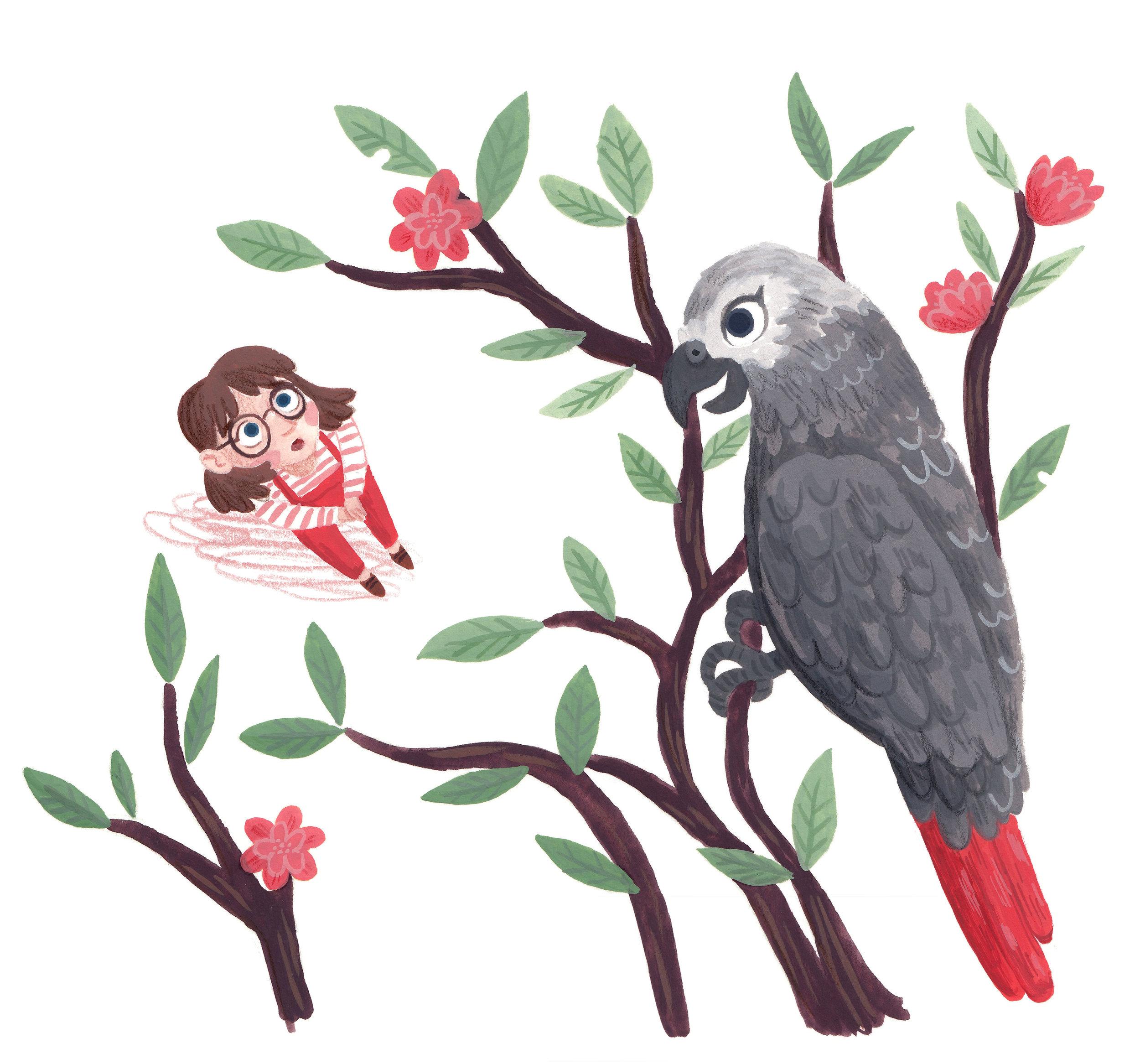 Parrot escape 2.jpg