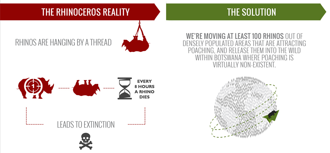 Infographic created by Rhino Without Borders