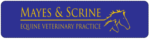 mayes-and-scrine-logo.png