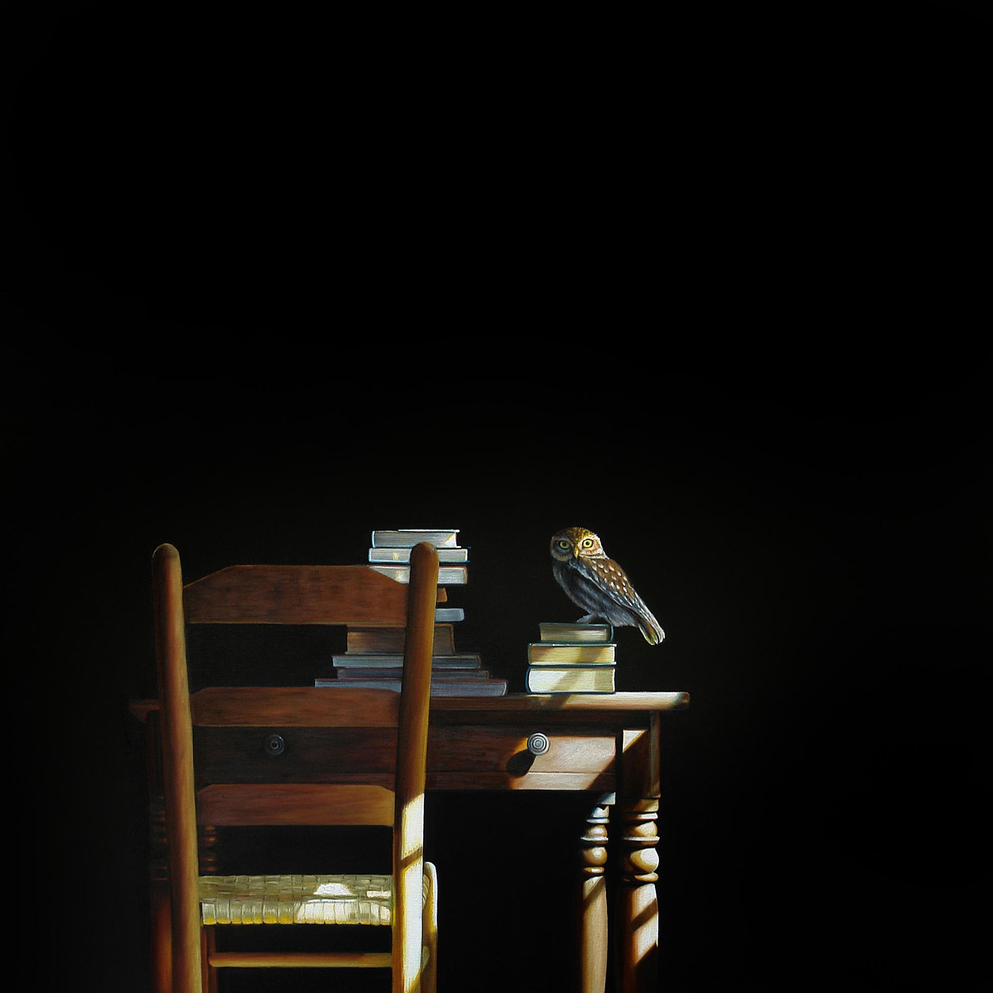 Night Owl | 36 x 36 | Oil on canvas