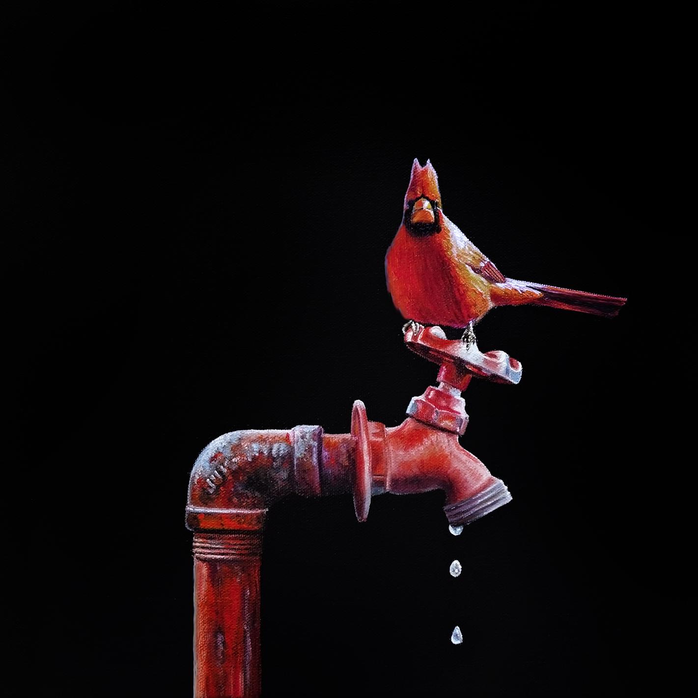 Lil Perch No. 52 | 12 x 12 | Oil on canvas