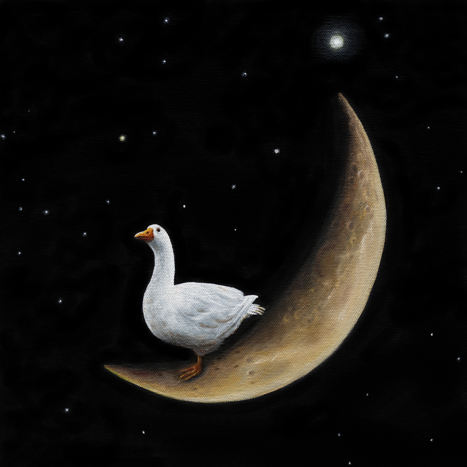 Crescent Goose | 12 x 12 | Oil on canvas