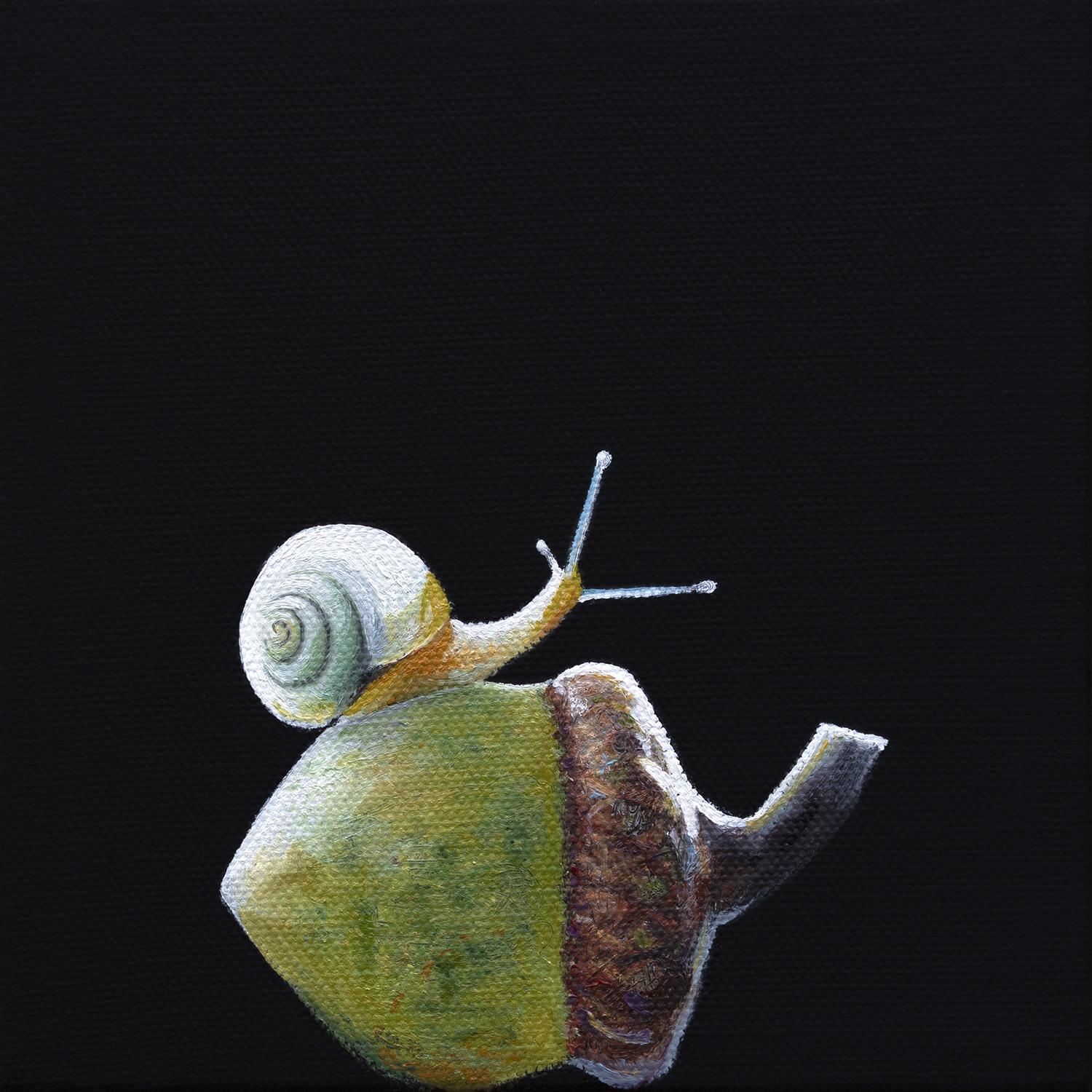 Gastropod | 7 x 7 | Oil on canvas