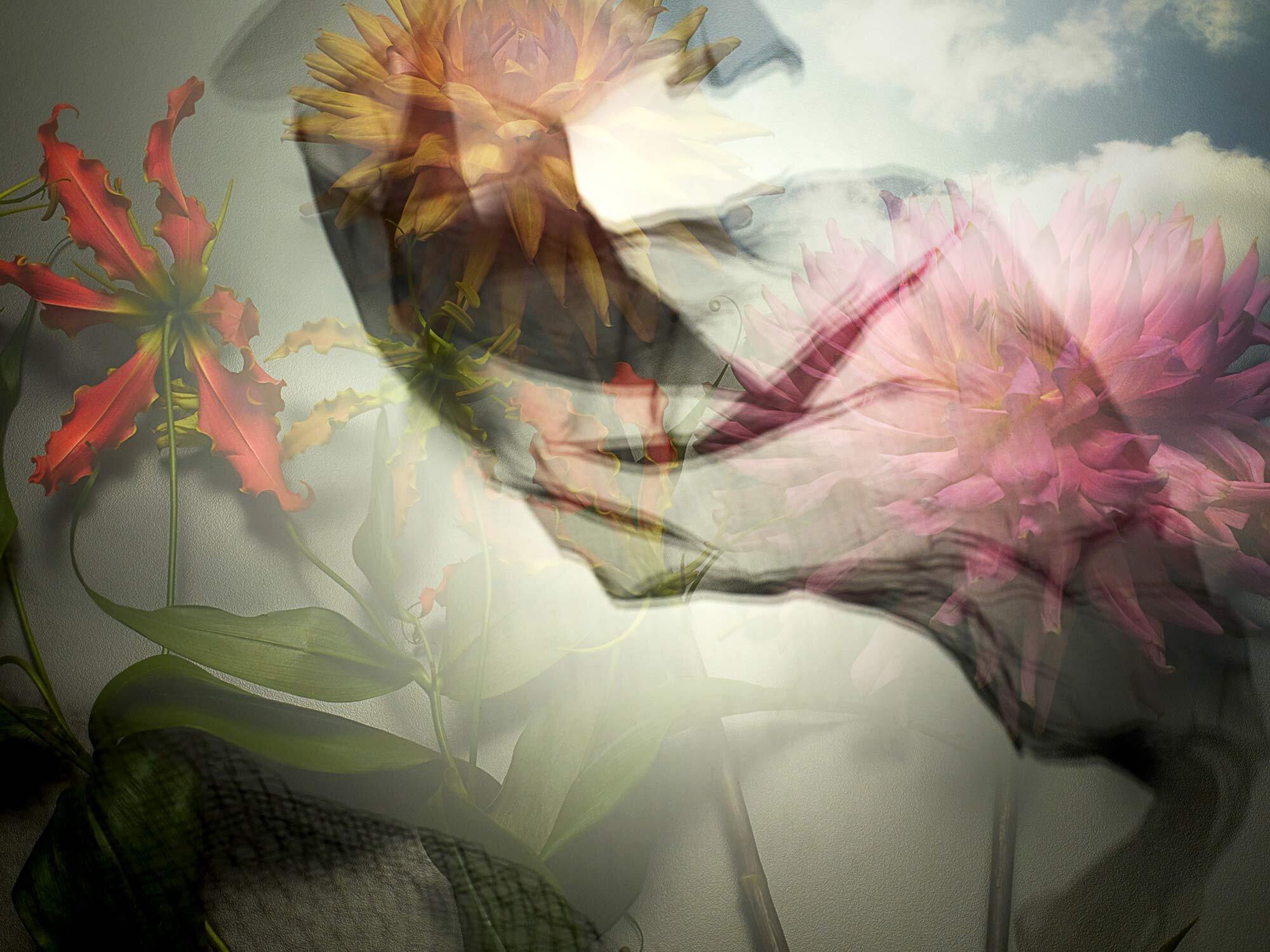 180927_02_-Nostalgia-Florals-Johanne-Mills.jpg
