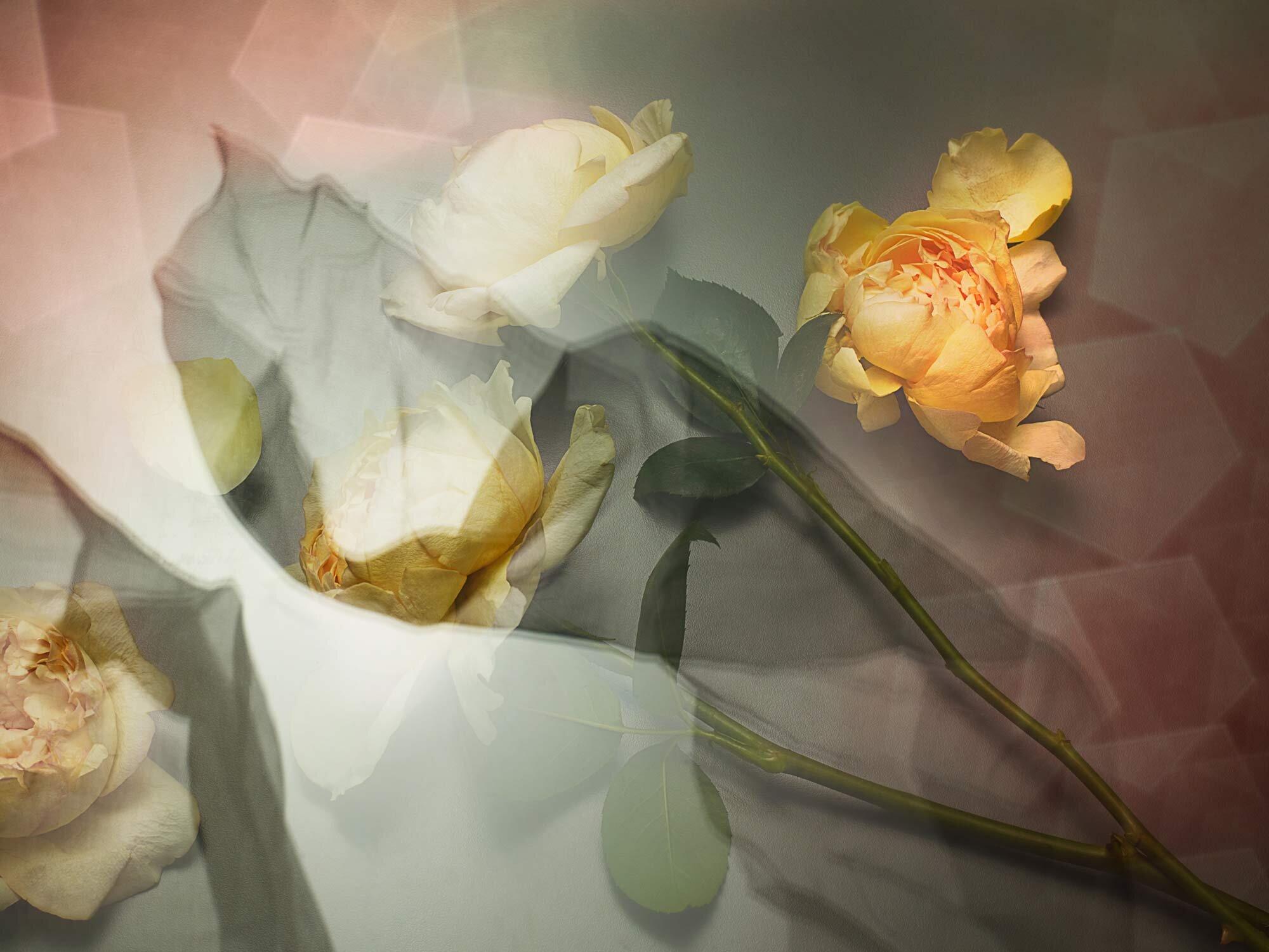 180927_04-Nostalgia-Johanne-Mills-Florals.jpg