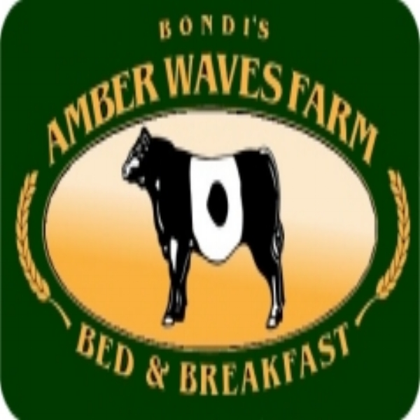Amber Waves Farm  - The perfect setting for Wine Trail weekends, gatherings of friends of family, quick getaways, wedding guests and retreats. Enjoy the peace and tranquility of our 347 acres of pasture.