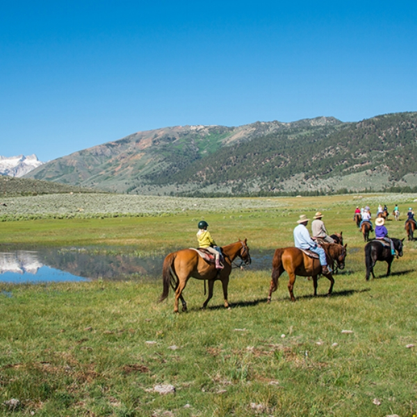 Hunewill Guest Ranch  - Hunewill Gust Ranch is located in Bridgeport, California on the eastern slope of the beautiful Sierra Nevada Mountains bordering Yosemite National Park.