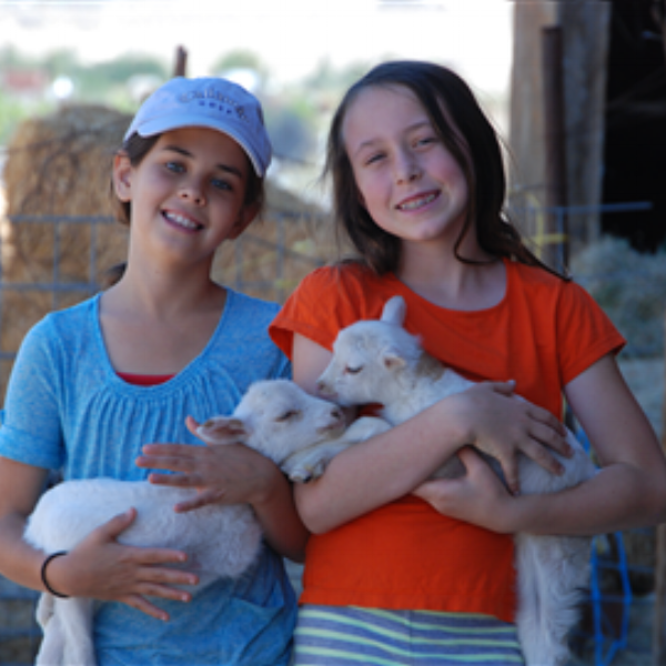 Flip Flop - Flip Flop is a family farm in Southern California that connects people, especially kids, to their food. We help them understand where food comes from and why it's so important to eat healthy.
