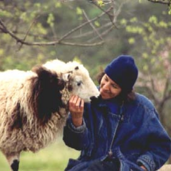 Little Creek Acres Farm  - The Center for Living in Harmony is a nonprofit organization dedicated to the promotion of Self-Relient, Harmonious Living; harmony with self, with others, and with the Planet.