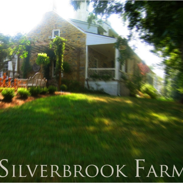 Silverbrook Farm  - A charming country AgroBnB and event site. Silverbrook Farm lies nestled between the Blue Ridge Mountains and the picturesque Short Hill Mountain, offering a vista of rolling countryside.